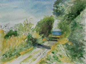 watercolor, Aeroe